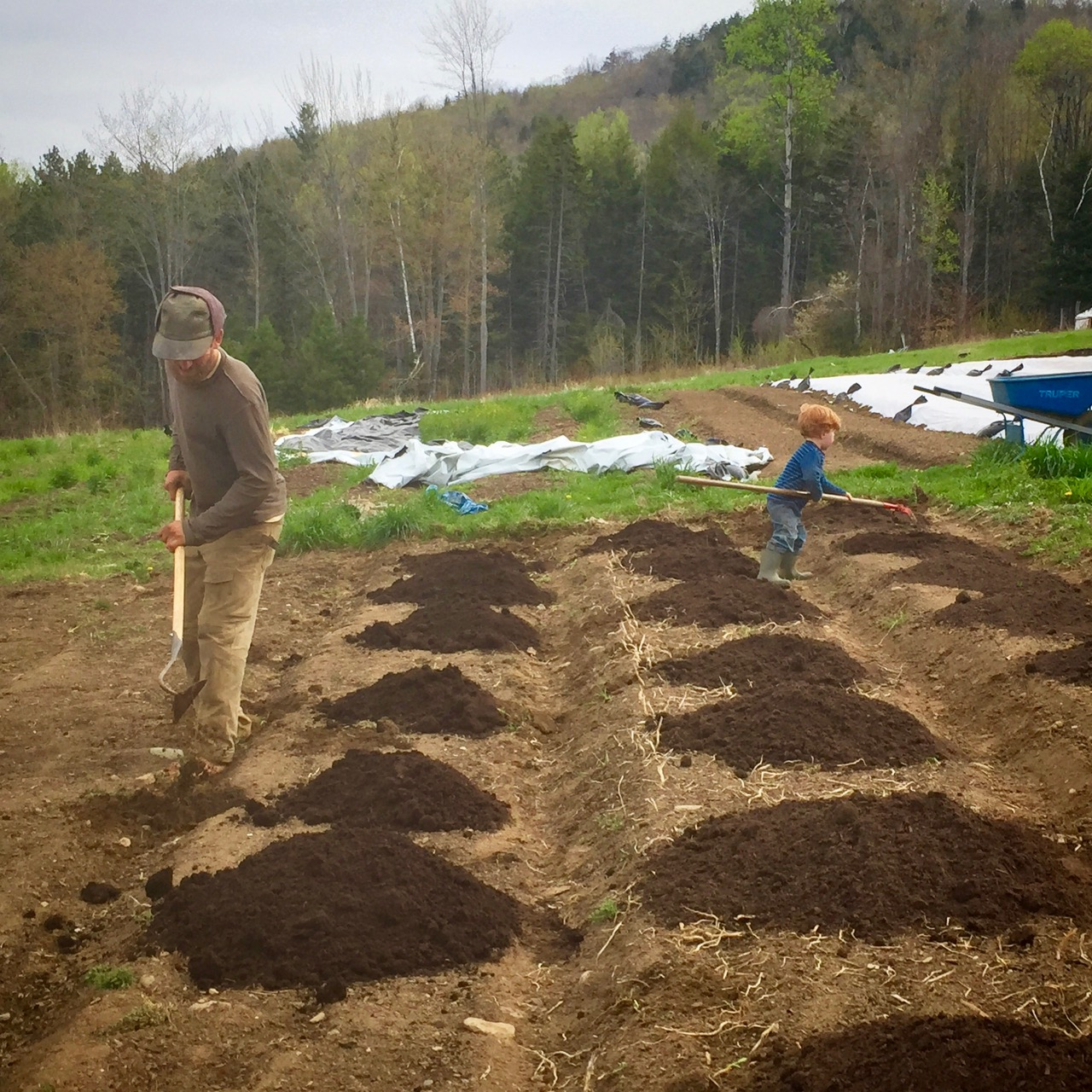 Spring Garden Prep: when and how to work the soil - The Good Heart Life